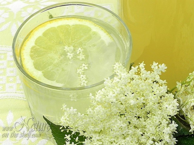 Served elderflower soft drink
