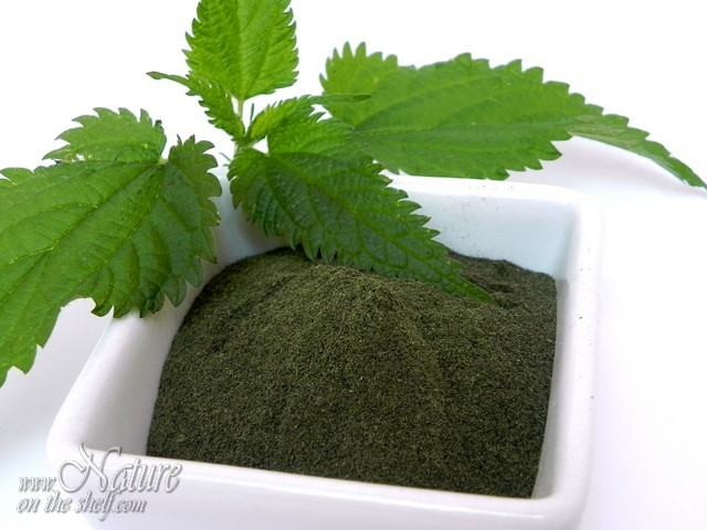 Homemade stinging nettle leaf powder