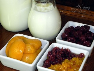 Ingredients for homemade fruit yogurt