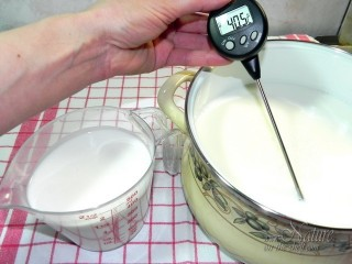 Right milk temperature for yogurt making