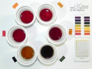 Beet juice in various pH