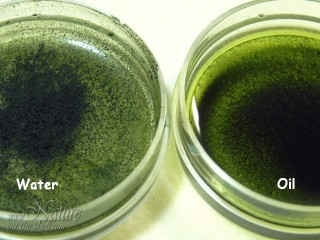 Homemade chlorophyll powder suspended in water and oil