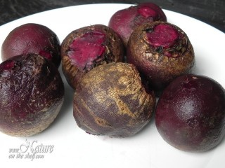 Roots of red beet