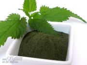 Homemade nettle leaf powder